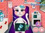 Беременная кошка Анжела на осмотре