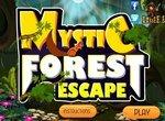 Таинственный побег из леса
