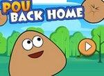 Поу: Возвращение домой