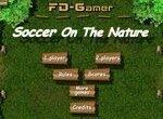 Сыграй в футбол на природе