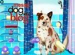 Собака точка ком: Грязный пес