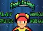 Рискованная рыбалка на акул