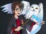 Гарри Поттер: Найди отличия