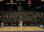 Зайцы в чемпионате мира по волейболу
