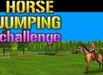 Прыжки на лошади в 3D