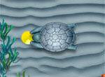 Зума на дне океана