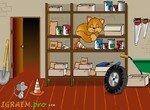 Спрячься от рыжего кота
