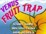 Растение Венера ловит фрукты