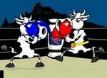 Супер Корова в боксерском поединке