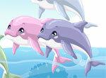 Уход за дельфином