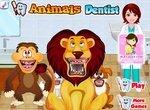 Животные на приеме у дантиста