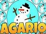 Рождество в Агарио