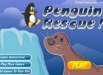 Морской котик спасает пингвинят