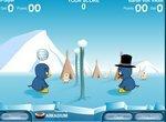 Пингвинята играют в волейбол