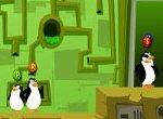 Пингвины спасают окружающую среду