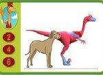 Мистер Кондуктор измеряет динозавров