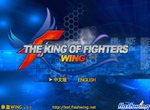 Король аниме бойцов