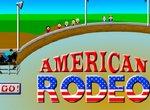 Удержись на лошади в Американском родео